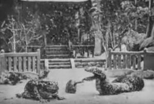san-sukumi Jiraiya Tsunade Orochimaru